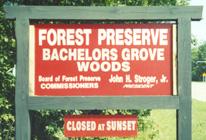 bgwoods